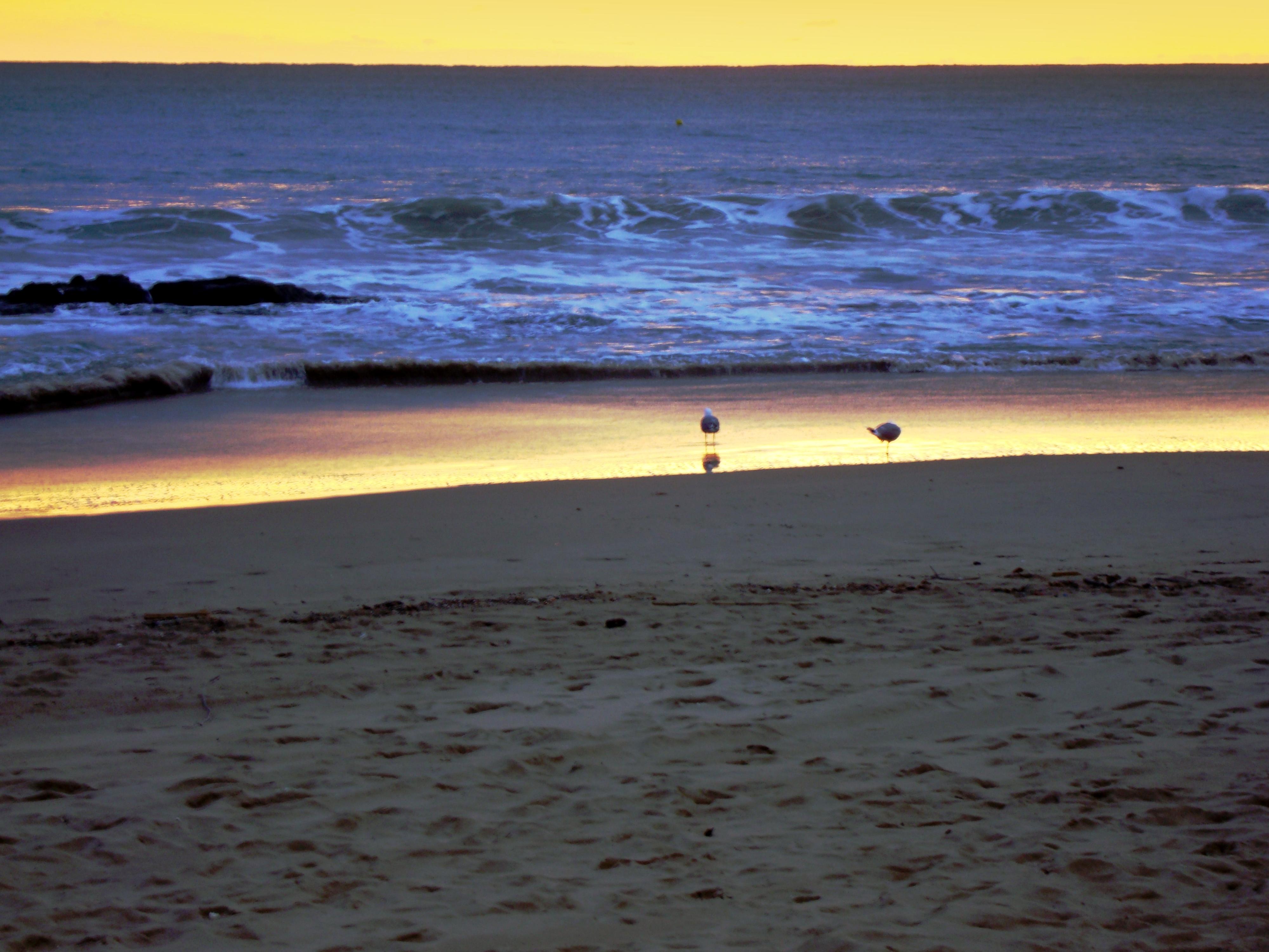 Anochecer En La Playa