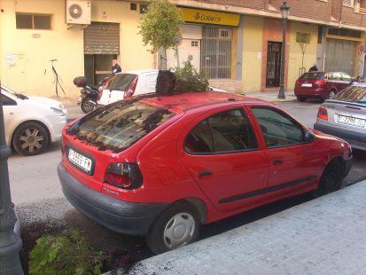 macetero
