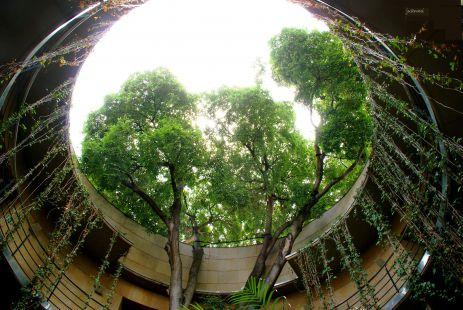 Fotos jard n bot nico de valencia de juanmi objetivo - Jardin botanico valencia ...