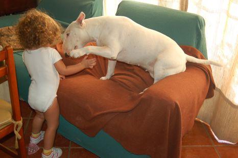 respeto y cariño de Gurka y Lola