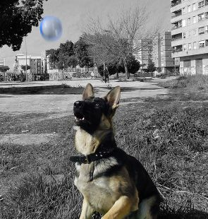 Lesther cumple 9 meses.