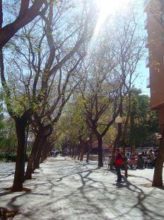 El único parque de Russafa