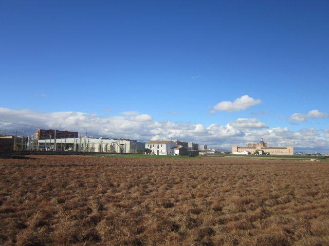 Campo de Chufas