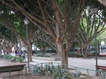 Parque La Fonteta