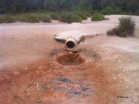 Aguas residuales en la  Dehesa del Saler