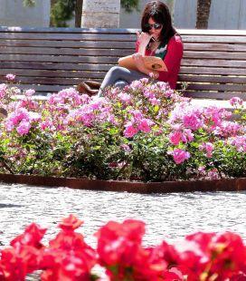 Leyendo entre flores