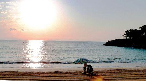 El matiner de la platja