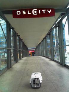 Tity de turista en Noruega