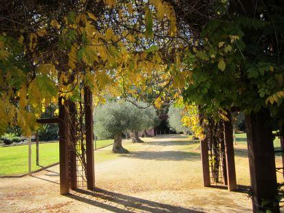Jardin Escénico
