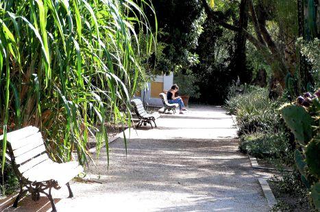 El  Botánico, oasis en la ciudad